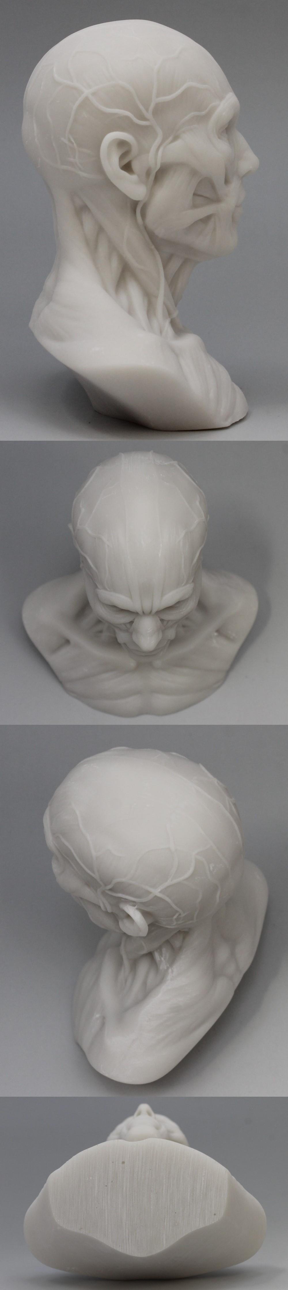 009人体模型2